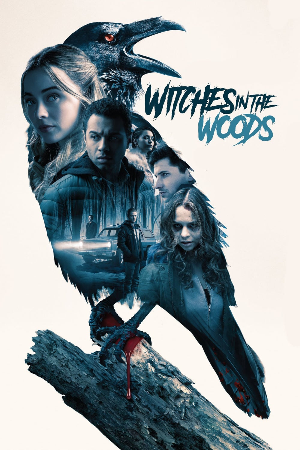 "Poster for the movie ""Witches In The Woods"""
