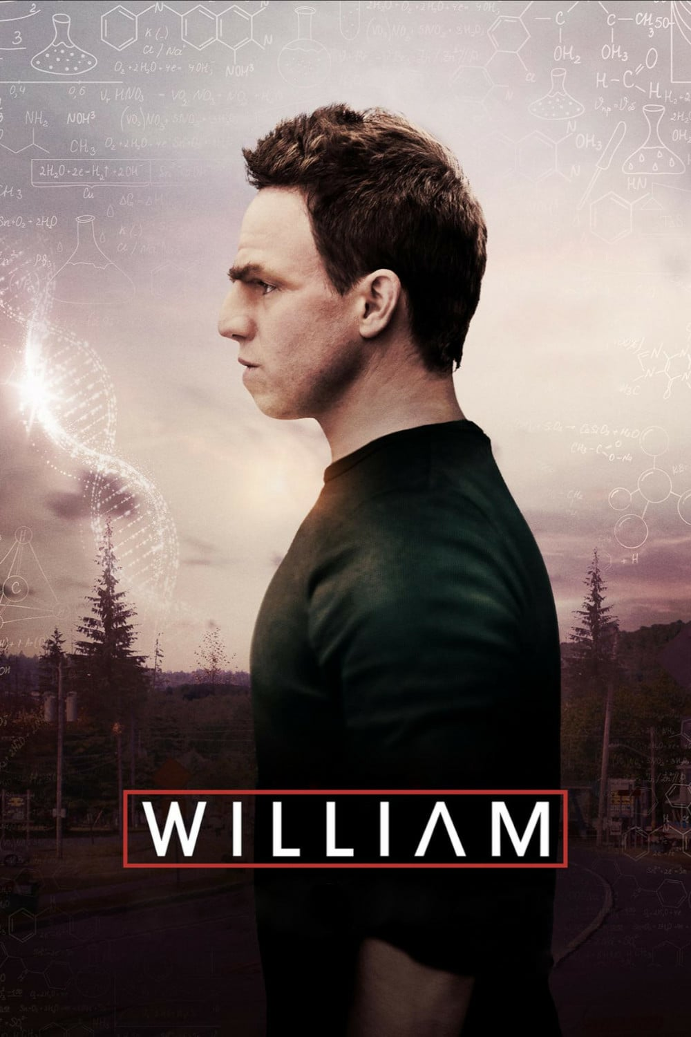 "Poster for the movie ""William"""